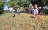Работа дошкольных образовательных организаций в период ковид